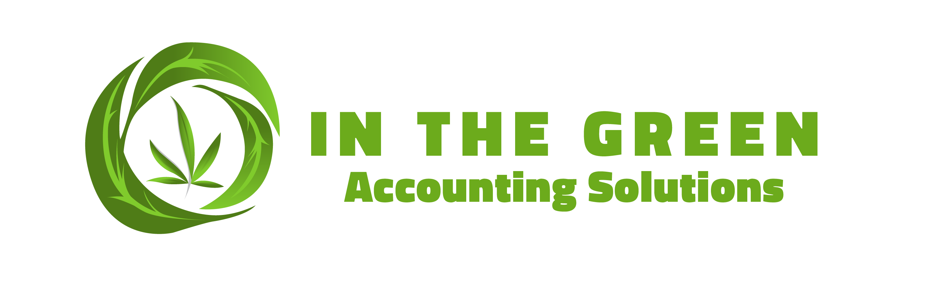 In The Green Accounting Solutions